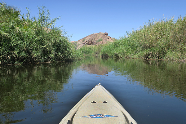 Kayak fishing the backwaters of the lower Colorado River