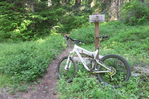 Cascade Mountain singletrack