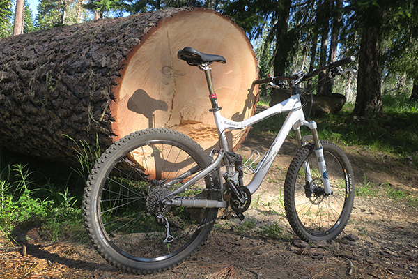 Large blown down tree and MTB