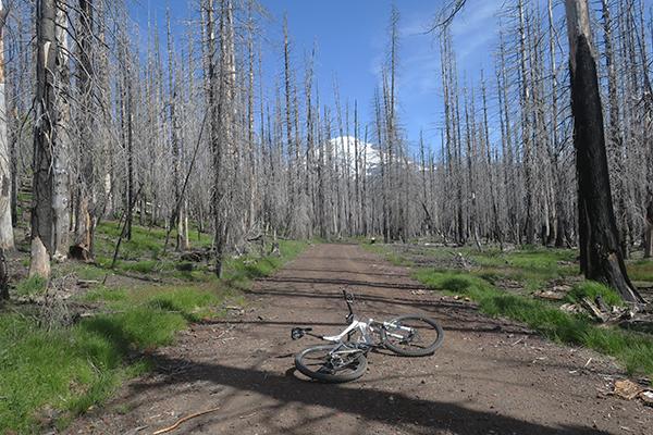 Riding mountain bikes near Mt Adams
