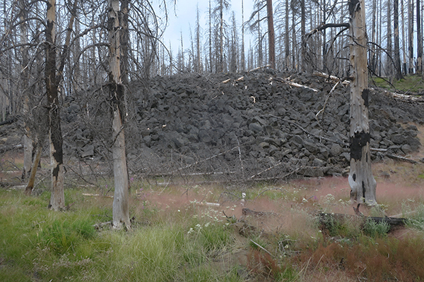 Ancient lava flow from erupting Mt. Adams in the Cascade Mountains