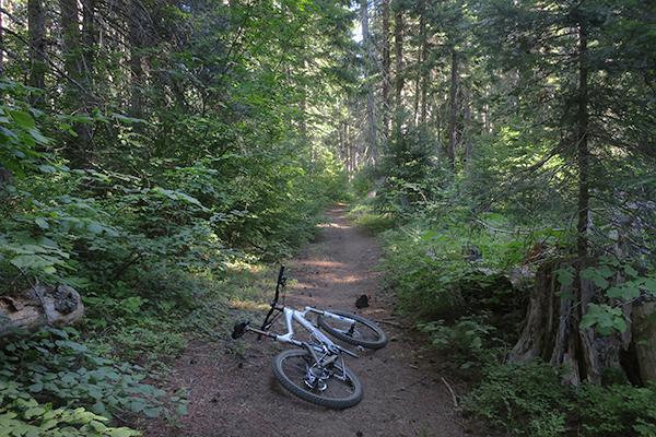 Early morning mountain biking on a Cascade Mountain trail