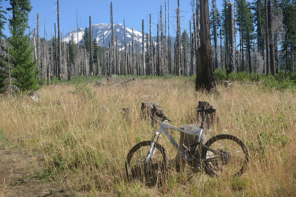 Mountain biking near Mt Adams