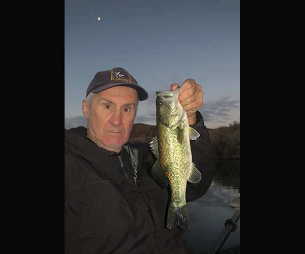Colorado River largemouth bass caught just before dawn under a half moon