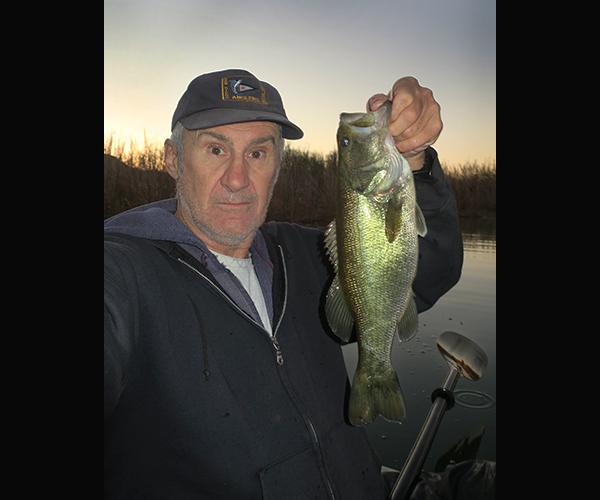 Colorado River largemouth bass caught at dawn by watermanatwork.com kayak fisherman Ron Barbish