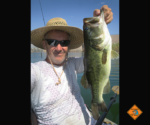 Big Colorado River largemouth bass caught by watermanatwork.com kayak fisherman Ron Barbish