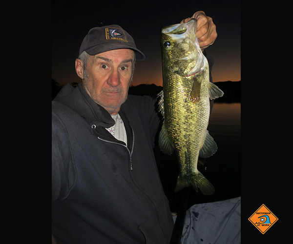 Colorado River largemouth bass caught at night by watermanatwork.com kayak fisherman Ron Barbish
