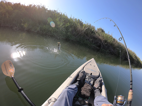 Kayak fishing on the Colorado River with watermanatwork.com