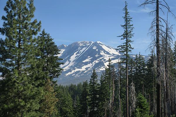 Mt. Adams 7-1-21