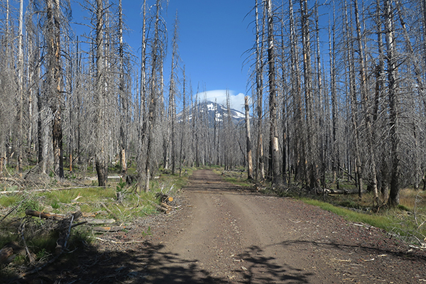 Cascade Mtn road. Mt Adams