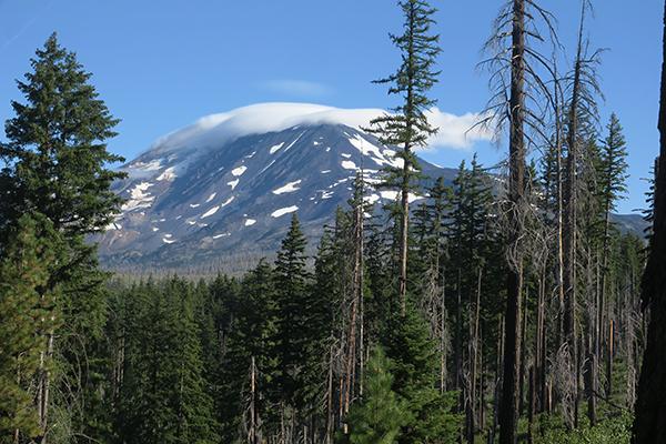 Cloud capped Mt Adams 8-7-21