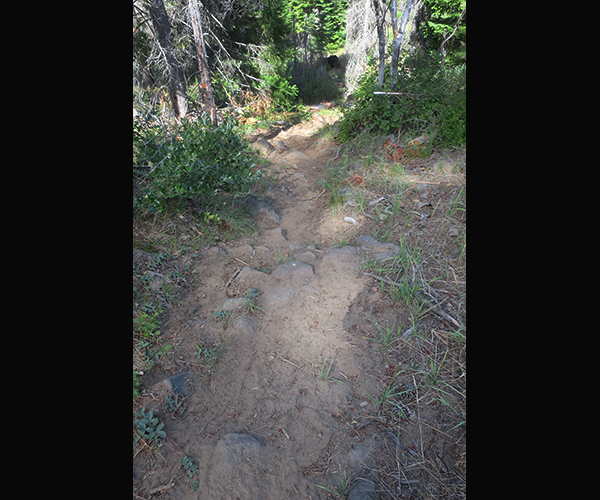Rocky section of a Cascade Mtn trail