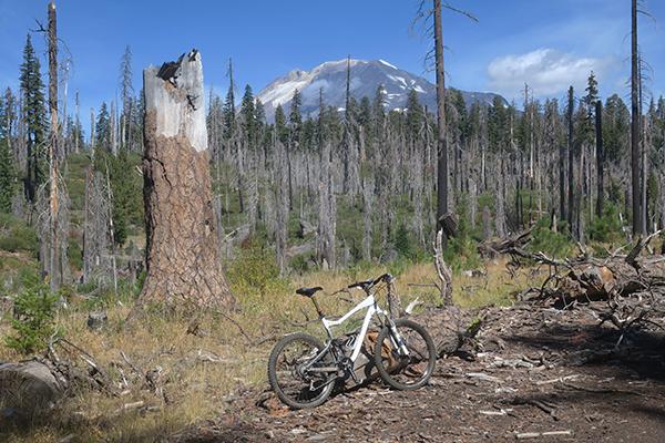 Mountain bike riding in the Cascade Mountains near Mt Adams