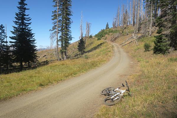 Steep Cascade Mountain road